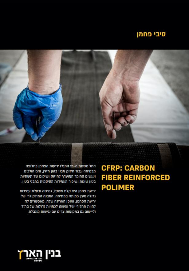 פרופיל סיבי פחמן CFRP
